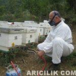 Oksalik Asit İle Varroa Mücadelesi 2