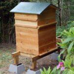 Perone Arı Kovanı