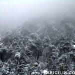 2015 Yılı Kar Manzaraları
