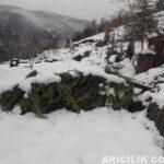 2015 Yılı Kar Manzaraları 15