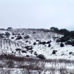 2015 Yılı Kar Manzaraları 50