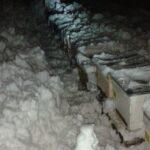 2015 Yılı Kar Manzaraları 61