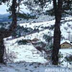 2015 Yılı Kar Manzaraları 65