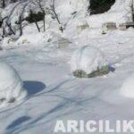 2015 Yılı Kar Manzaraları 68