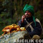 Nepal Arıcıların Arılardan Bal Alması 10