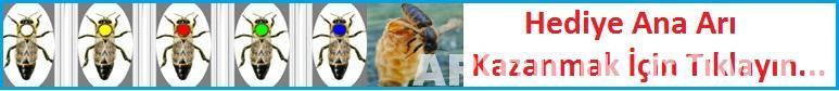 hediye ana arı kazanmak için tıklayın
