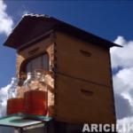 arı kovanı açmadan bal toplayın 10