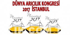 Dünya Arıcılık Kongresi logo