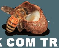 arı sütünün faydaları 0