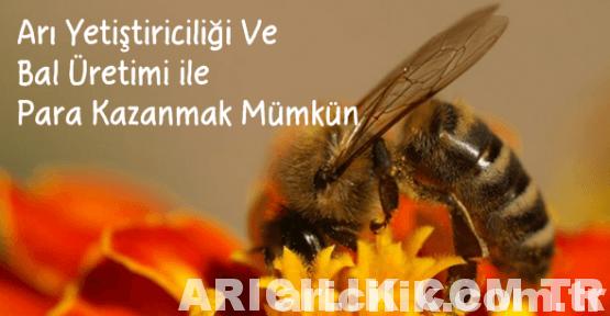 aricilikta-para-var-mi-1