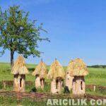 Eski Tip Arı Kovanları