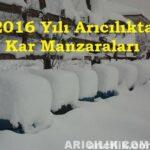 2016 yılı arıcılıkta kar manzaraları