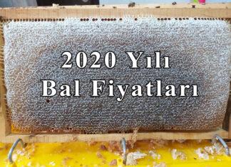 2020 yıl bal fiyatları