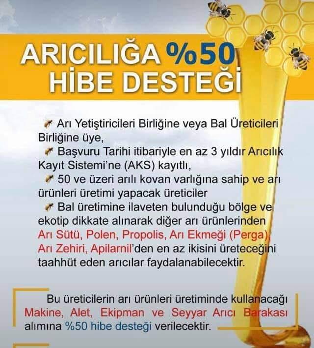 50 kovanlik aricilik hibe projesi 1