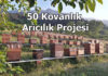 50 kovanlik aricilik projesi hakkinda